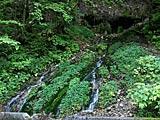 白骨温泉の竜神の滝と三十三観音