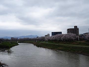 asuwagawasakura1