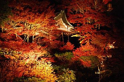 毘沙門堂のライトアップ