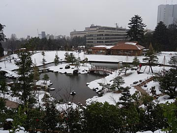 玉泉院丸庭園の雪景色