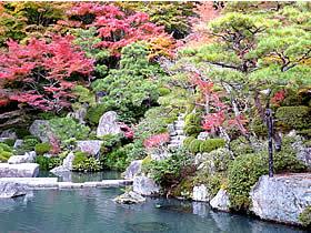 百済寺の紅葉