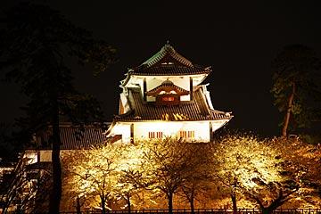 kanazawajousakura3