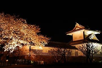 kanazawajousakura4