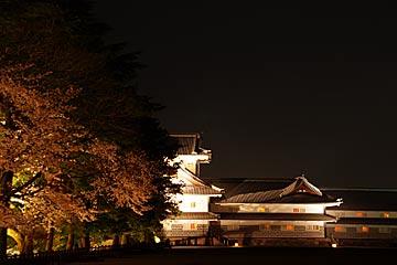 kanazawajousakura8