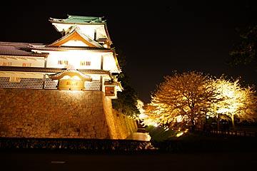 kanazawajousakura9