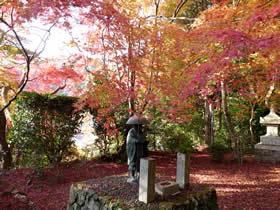 金蔵寺の紅葉