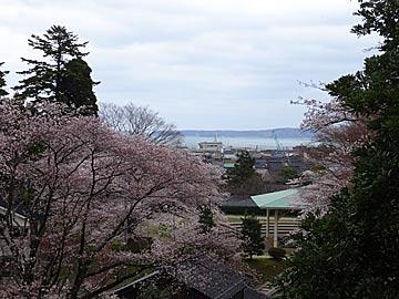 komaruyama3
