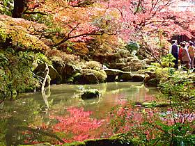 金剛輪寺の紅葉