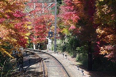 二瀬駅近くの紅葉のトンネル