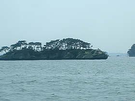 松島島巡り観光船 仁王丸の室内からの風景