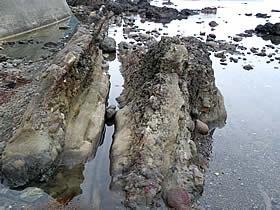 大崎島近辺の岩