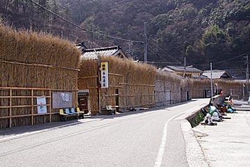 oosawa2
