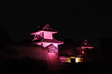 pinkkanazawajou1