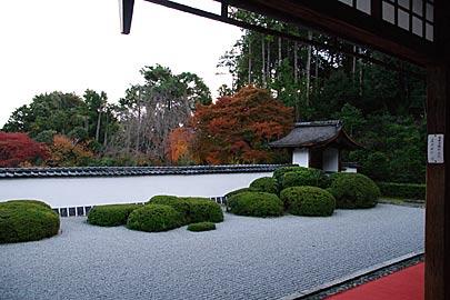 正伝寺の庭園