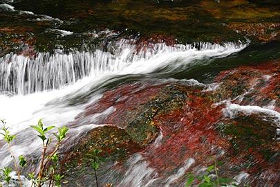 竹田川渓谷の赤岩のある急流