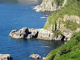 象に似た無名の岩